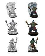 D&D Nolzur's Marvelous Miniatures: Water Genasi Druid