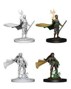 D&D Nolzur's Marvelous Miniatures: Elf Druid 2