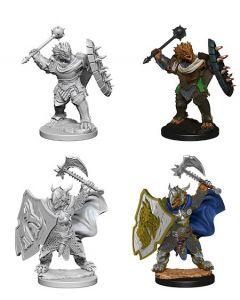 D&D Nolzur's Marvelous Miniatures: Dragonborn Paladin