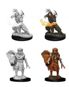 D&D Nolzur's Marvelous Miniatures: Human Druid 3