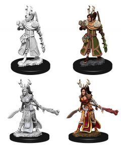 D&D Nolzur's Marvelous Miniatures: Human Druid 4
