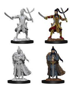 D&D Nolzur's Marvelous Miniatures: Elf Paladin 2