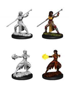 D&D Nolzur's Marvelous Miniatures: Half-Elf Monk 2