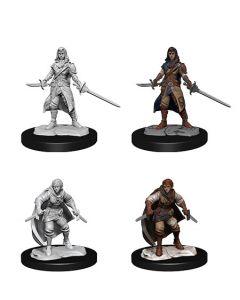 D&D Nolzur's Marvelous Miniatures: Half-Elf Rogue