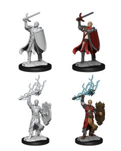 D&D Nolzur's Marvelous Miniatures: Half-Elf Paladin