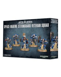 Warhammer 40k: Space Marine Sternguard Veteran Squad