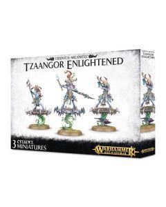 Warhammer AoS: Tzeentch Arcanites: Tzaangor Enlightened