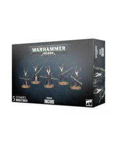 Warhammer 40k: Drukhari: Incubi (2020)