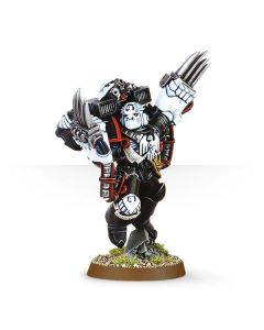 Warhammer 40k: Raven Guard Chapter Master Kayvaan Shrike